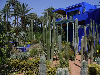 jardin majorelle. Black Bedroom Furniture Sets. Home Design Ideas